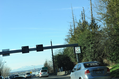Beginning of the very expensive changes coming to the Floating 520 Bridge, new lighted speed limit signs, Speed Limit 50, and what's with those dead tree tops?, Medina, Washington, USA