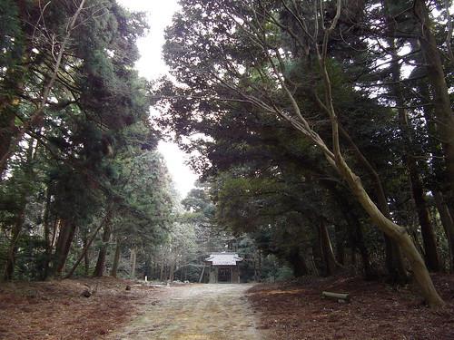 猿田彦神社 #1