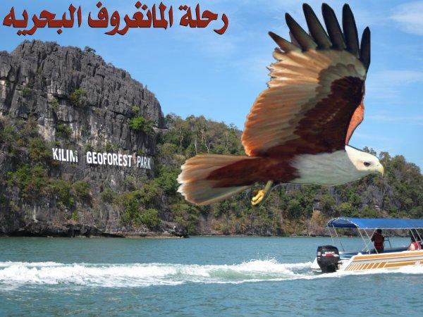 رسوم دخول الاماكن السياحيه في ماليزيا 32