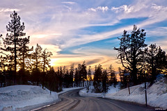 Zig Zag to Heaven [ Explored] (jasmineleephotography.com) Tags: road trees sunset sun lake snow tahoe kirkwood zigzag jasminelee canon5dmarkii photosbyjas