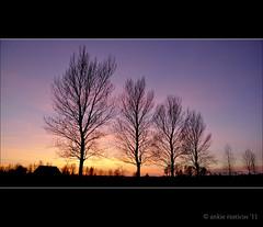 Zonsondergang (Ankie Rusticus, I'm not much here) Tags: trees zonsondergang bomen lucht rood tinga reflectie ijlst silhouetten