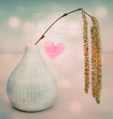 Happy St Valentine's Day (louisahennessysuou) Tags: heart valentine card vase valentinesday stvalentine catkins saintvalentine creditcrunch t189522011week7