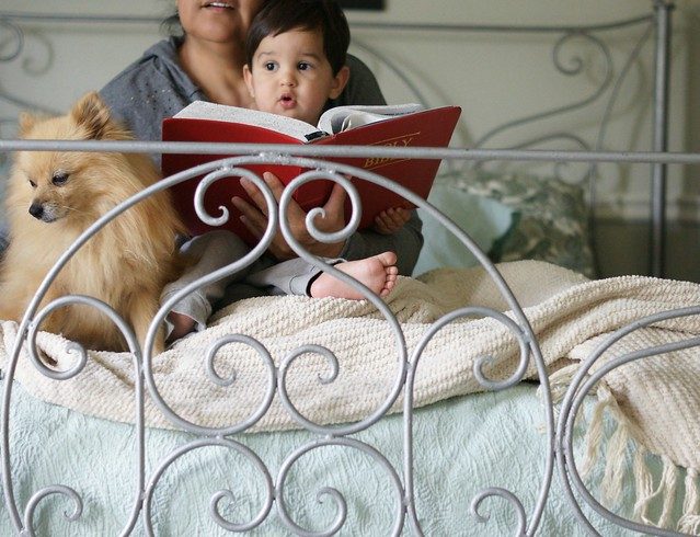 grandma reads to the baby