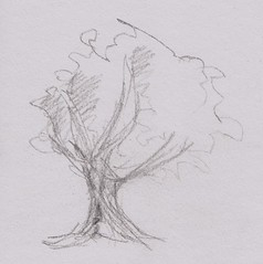 Drawing sixteen - tree doodle