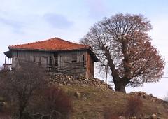 DSC05512 (ebruzenesen - esengül) Tags: turkey türkiye 06 ankara eski evler dağ yeşil yayla dağevleri yaylaevleri ebruzenesen esengülinalpulat
