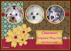 Charmers: Delightful Mug Club ☺ (pet faces only)