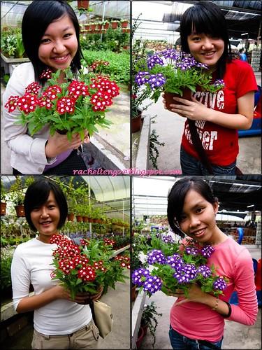 flower combine