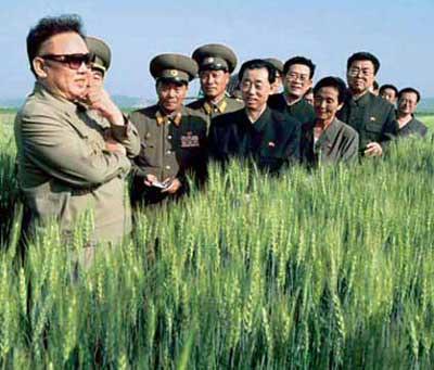 专译:朝鲜缺粮求助外援 美国很犹豫