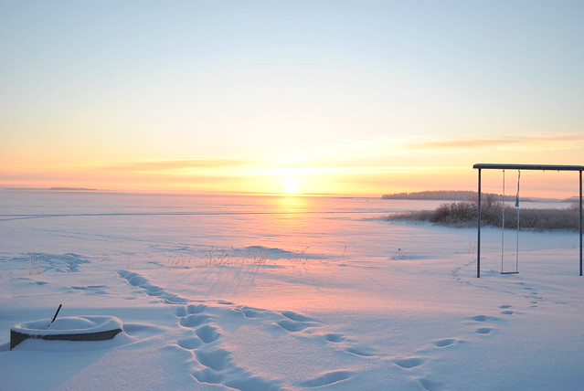 20110126 - winter 068