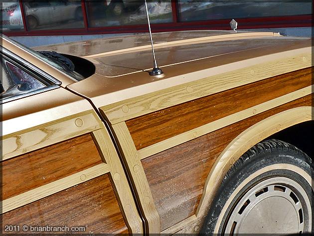 P1140378_faux_wood
