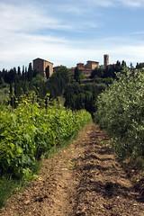 Tuscan scenery (Guido Havelaar) Tags: italien italy italia tuscany toscane 意大利 bellaitalia италия italiantourism italiaturismo turismoitaliano
