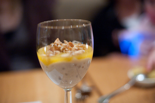 Tapioca Pudding with Mango Sauce and Macadamia Praline-Gobo, New York