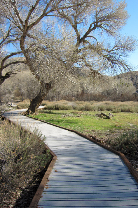 022411_MorongoCanyon03