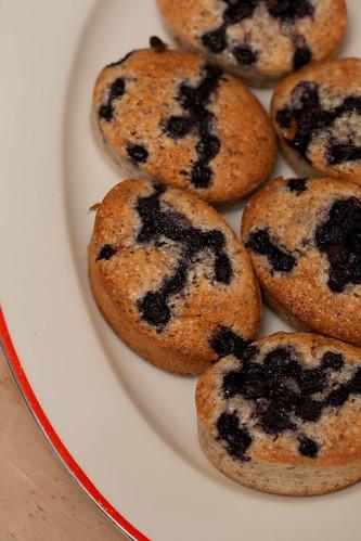 Lemon blueberry friands / Sidruni-mustikafriandid