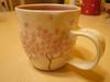 2011年版的星巴克櫻花杯(台灣版)開箱