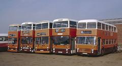 Orange Day Parade (Lady Wulfrun) Tags: bus 1990s 1990 gmpte maidstonedistrict sypte 50y smithsoftysoe 1731990 nku570r ana22t nku571r yna344m hke677l 53y