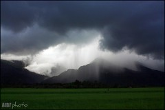 Rain Over Mt. Halcon (ibarra_svd) Tags: mountains rain clouds philippines ricefields darkclouds mindoro calapan philippinetourism philippinemountains calapancity ormindoro tropicalmountains asianmountains mindorotourism southeastasianmountains