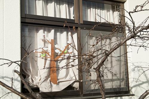 110226.052 福岡市東区 K7 da16-50 2.8#