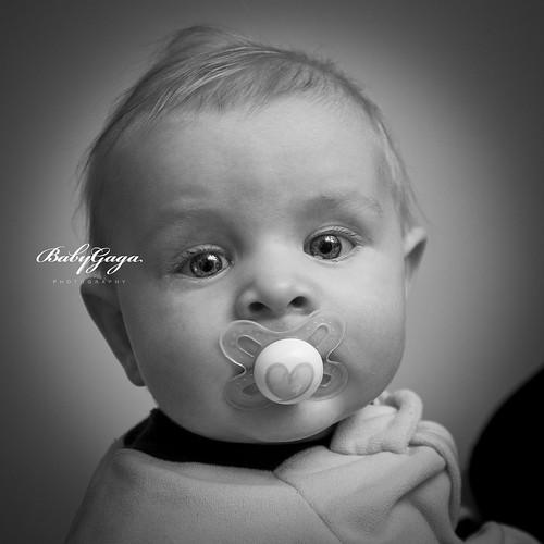 Baby Gaga - Fraser