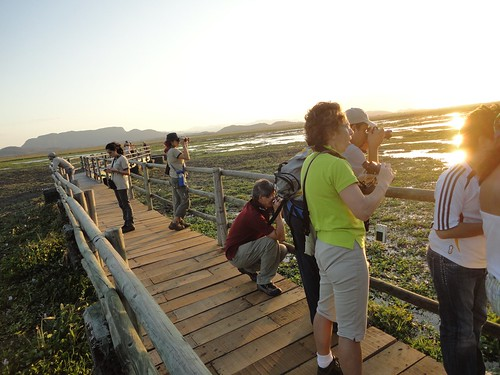 Palo Verde, puente sobre humedal