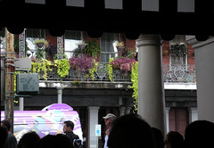 Decatur Street from Cafe du Monde (dsjeffries) Tags: plants fern basket neworleans wroughtiron frenchquarter nola ferns hangingplants neworleanslouisiana wroughtironbalcony hangingferns quartierfrancais