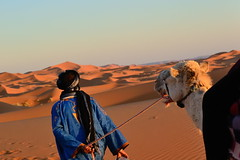 Into the desert (Massi23 (www.massimocasiraghi.com)) Tags: travel sunset people colors animal landscape tramonto desert morocco viaggio nikond90 massimocasiraghi