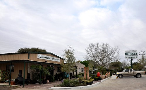 Maldonado's Nursery in Seguin