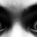 Eyes (75365)