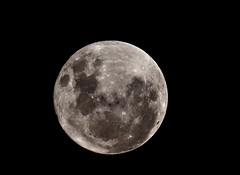Full moon 19/03/2011 (Pablin79) Tags: moon argentina night digital canon eos reflex luna full fullmoon 5d teleconverter pipa misiones posadas markii 70200mm 2011 canonef70200mmf4lisusm canoneos5dmarkii 5dmkii pabloreinsch pabloreinschphotography pablin79
