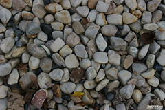 TAKETONE_GROUND_0086 (Game Texture Images) Tags: stone earth ground pebble gravel pebbletexture stonetexture groundtexture graveltexture pebbleground gravelground