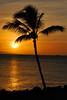 Good-Bye Maui (charlesmorcom (aka chuck cromwell)) Tags: ocean sunset tree water hawaii pacific maui palm