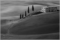Val d'Orcia in BW (carlo tardani) Tags: blackandwhite bw landscape campagna siena pienza valdorcia biancoenero ambiente cipressi nikond300 visipix bestcapturesaoi doublyniceshot tripleniceshot elitegalleryaoi mygearandmepremium mygearandmebronze mygearandmesilver mygearandmegold mygearandmeplatinum flickrstruereflection1 flickrstruereflection2 flickrstruereflection3 flickrstruereflection4 flickrstruereflection5 flickrstruereflection6 flickrstruereflection7 flickrstruereflectionexcellence trueexcellence1 trueexcellence2 trueexcellence3 gennaio2012challengewinnercontest