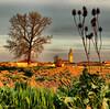 Fuentes de Nava (Fernando Frontela) Tags: scenery palencia fuentesdenava touraroundtheworld palenciayprovincia
