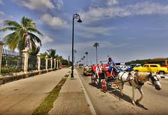 Av. del Puerto, Havana, Cuba (Bart's Dad) Tags: av del puerto havana cuba la habana horse cart road palm trees sky clouds