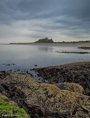 Northumbria - June 2014_2.jpg (r_lizzimore) Tags: coastal sea seascape bamburghcastle coast northumbria rocks
