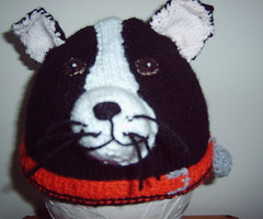 Border Collie (Impression-Knits) Tags: dog dogs strange hat fun weird knitting collie funny hats novelty novel unusual knitted
