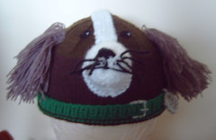 Springer Spaniel (Impression-Knits) Tags: dog dogs strange fun knitting funny hats novelty novel knitted spanial