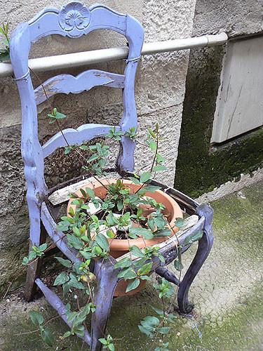 chaise fleurie.jpg