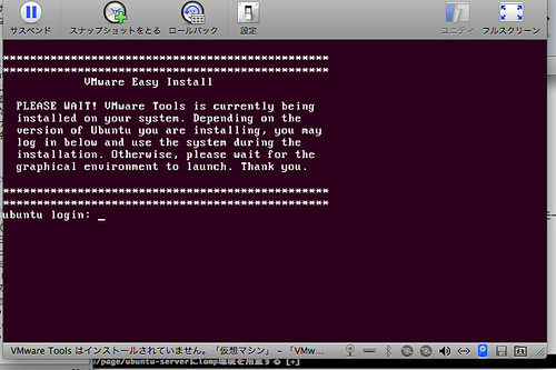 Install Ubuntu Server 10.10 to VMware Fusion 6