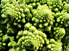 Fractals (V and the Bats) Tags: plant green flora broccoli vegetable thessaloniki fractals project365 romanescobroccoli romancauliflower 40365  foundinthecentralfoodmarket