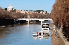 (*magma*) Tags: winter roma alberi fiume ponte cupola tevere inverno freddo battello mattina spietro imbarcazioni imbarcazione aquaromanorum
