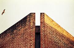 ahmedabad - IIM (original) 25 - signature corner (Doctor Casino) Tags: bird architecture architect kahn louiskahn indianinstituteofmanagement 19621974balkrishna doshianant rajeahmedabadcollegeschoollou