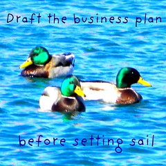 Draft the business plan first (gurdonark) Tags: goal plan business direction statement mission unprepared