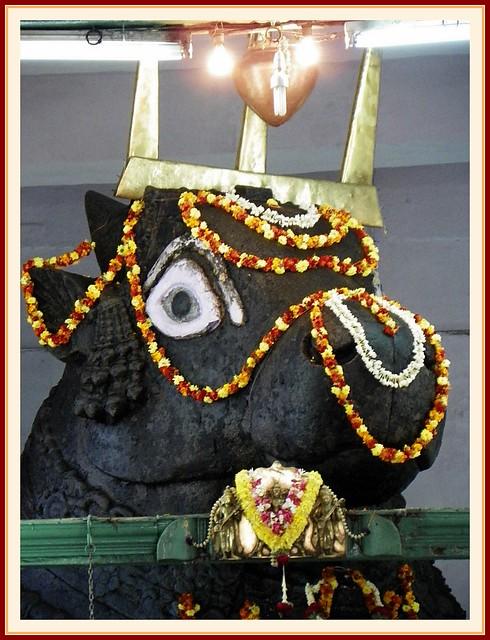 Nandi Bull - Basavangudi Bull Temple