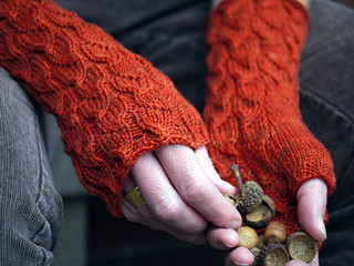 Fallberry Mitts pattern by Anne Hanson