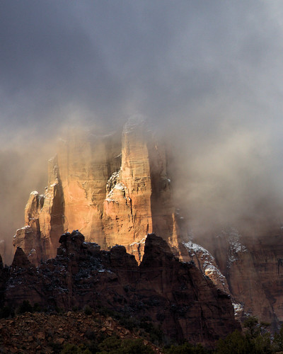8x10 Zion NP IMG_0677