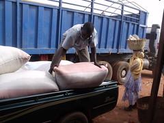 Déchargement des sacs de riz dans le dépôt de notre fournisseur