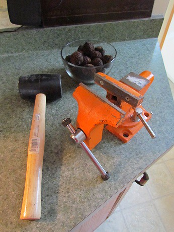 Vice and Rubber Mallet for Cracking Black Walnuts
