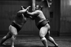Fights of Titans!!... (jorcolma) Tags: japan tokyo fight sumo japon titans ryogoku
