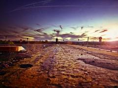 female ejactulation (pimpdisclosure) Tags: road sunset sky selfportrait list flare streetsigns pimp saltonsea pimpexposure pimpdisclosure ubecom itookthisshotonthewayhomefromthesaltonsea placedthecameraonthegroundtotaketheshot